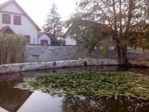 Recinzioni e muri in pietra